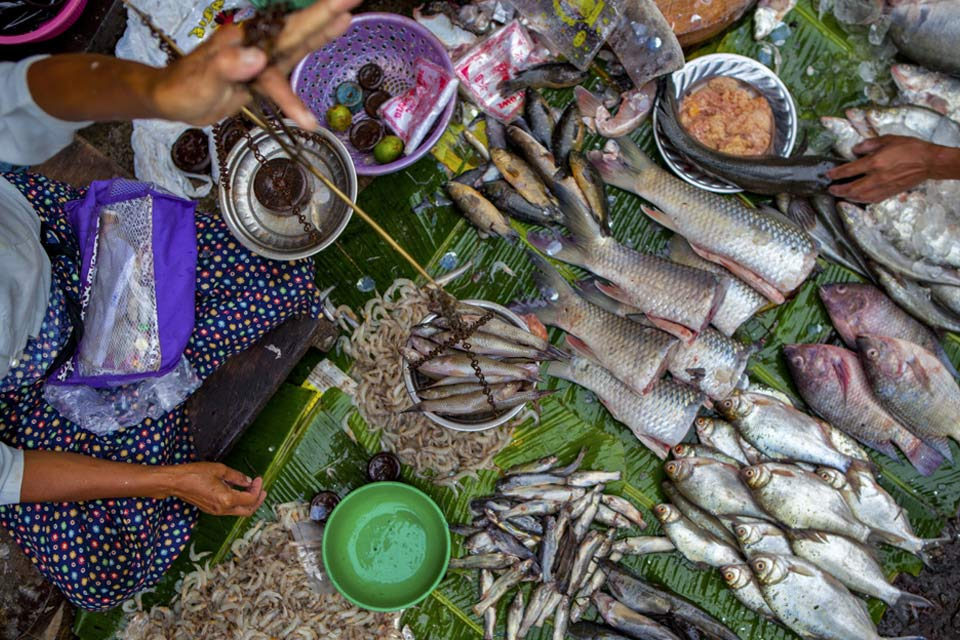 fish-seller-yangon-myanmar